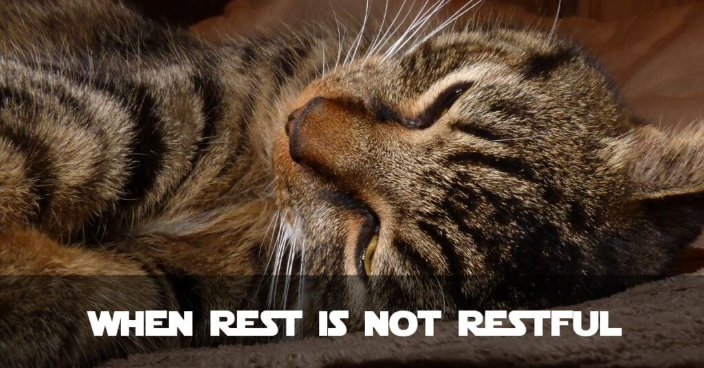 Fibromyalgia: When Rest Is Not Restful