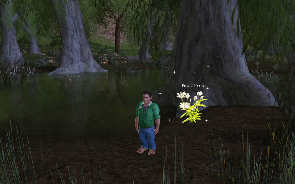 Collecting Frog Hops in Frogmorton in the Shire - LOTRO