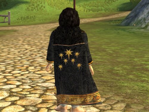 Revellers Cloak of the Odogil cosmetic
