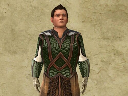 Wrist Guards and Armour of the Waking Wood - LOTRO Anniversary Cosmetic