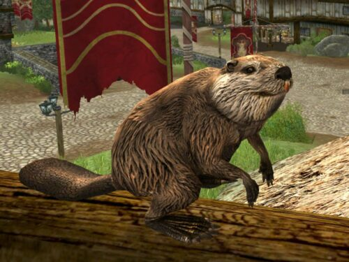 Another expressive pose from the Beaver