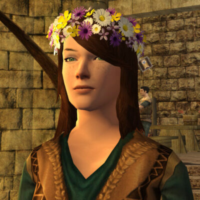 LOTRO Circlet of Fresh-Picked Flowers, Head Cosmetic