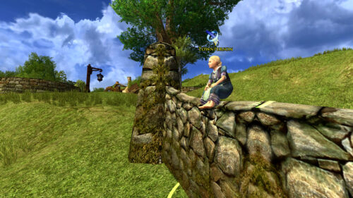 Shire Tricks - Townperson on Wall