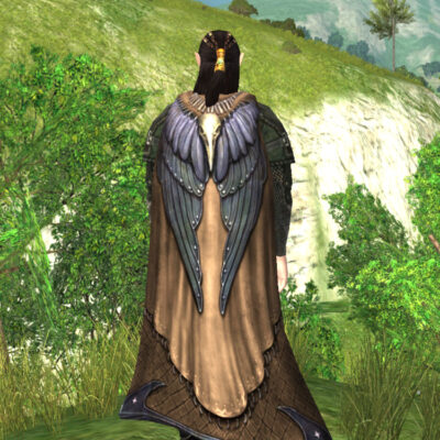 Cloak of the Rraven - LOTRO Fall Festival Cosmetic