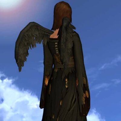 Cosmetic Raven Wings - Back Cosmetic for Harvestmath Festival 2020