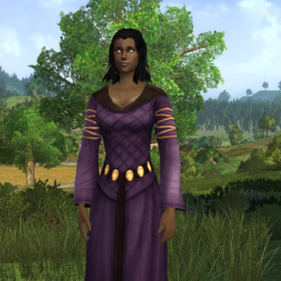 Dress of Anorien Autumn (Twilight Purple Dye) - LOTRO Fall Festival