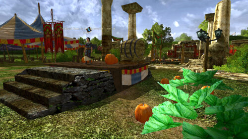 Pumpkin Patch Picking at the LOTRO Fall Festival