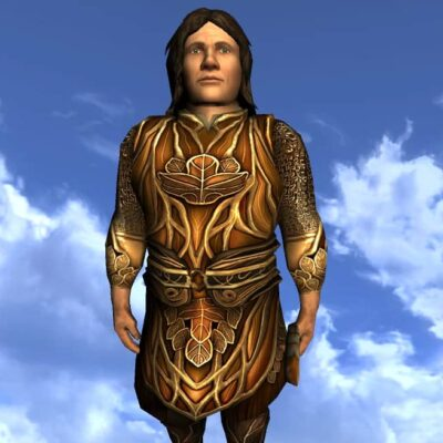 Tunic of the Leaf Turner - Male Hobbit - Upper Body Cosmetic