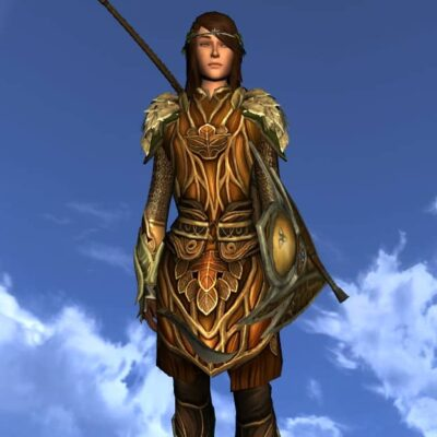 Tunic of the Leaf Turner - Female Human Race of Man - Upper Body Cosmetic