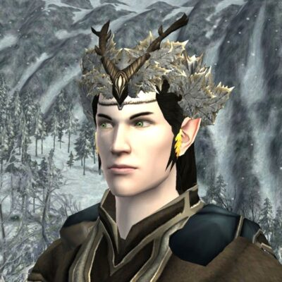 Ice Flower Crown - Head Cosmetic for 2019