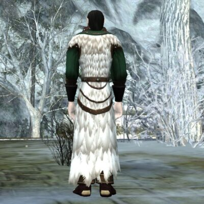 Vestments of the Northern Sky (Back) LOTRO 2018 Yule Cosmetic