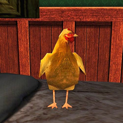 Red Chicken Cosmetic Pet - now available at the Buried Treasure Event