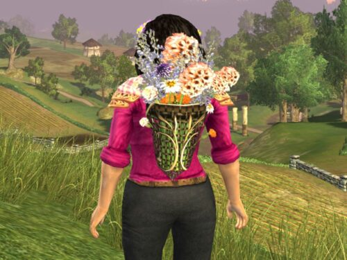 LOTRO Lasgalen Spring Pack, Back Cosmetic