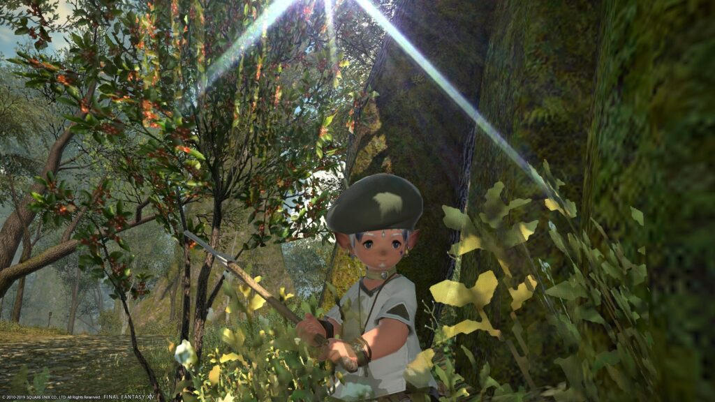 Crafting requires gathering first - here's my Lalafell Botanist in FFXIV