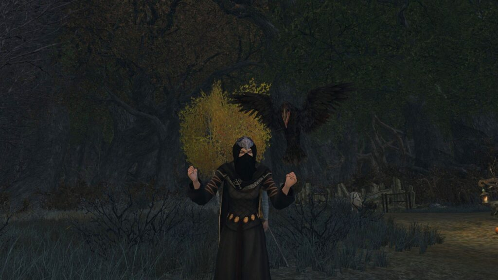 Raven of the Night Outfit uses Dress of the Anorian Autumn