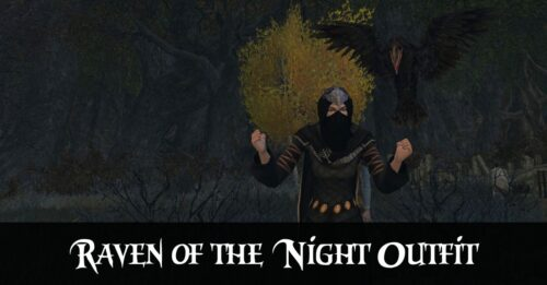 Raven of the Night - LOTRO Outfit Idea