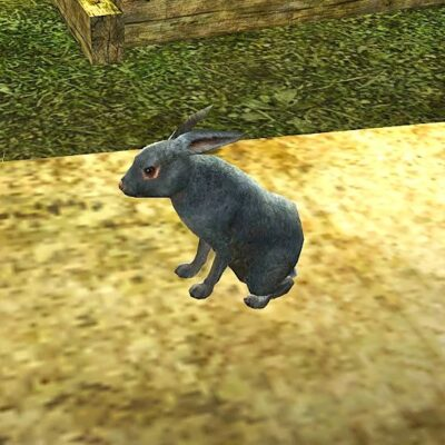 Tome of the Woodland Rabbit Pet - a fluffy grey bunny!