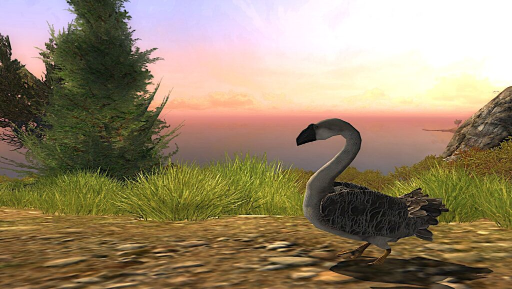 Tome of the Silly Goose (Cosmetic Pet)