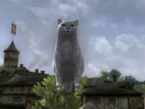 Tome of the Cozy Grey Cat - Anniversary Cosmetic Pet