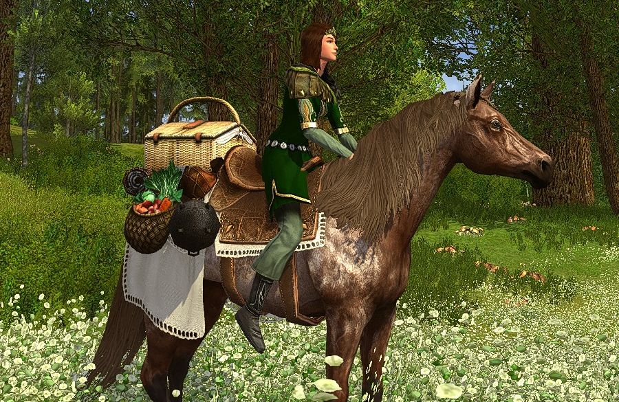 Picnic Steed - a Past Summer Festival Horse