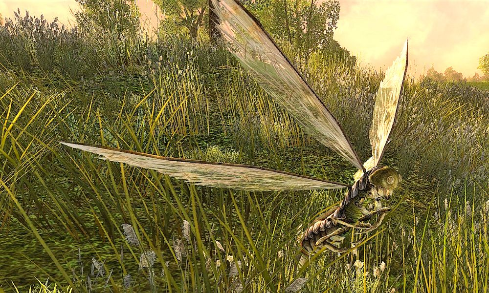 Sicklefly Slayer in Bree-land can be advanced in Midgewater Marsh