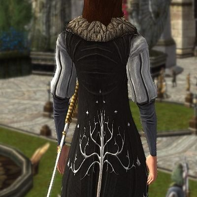 LOTRO Grooms Tunic (from the Back)