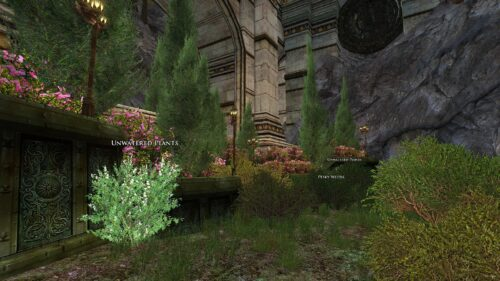 Pesky Weeds and Unwatered Plants - Midsummer Quest Growing Pains
