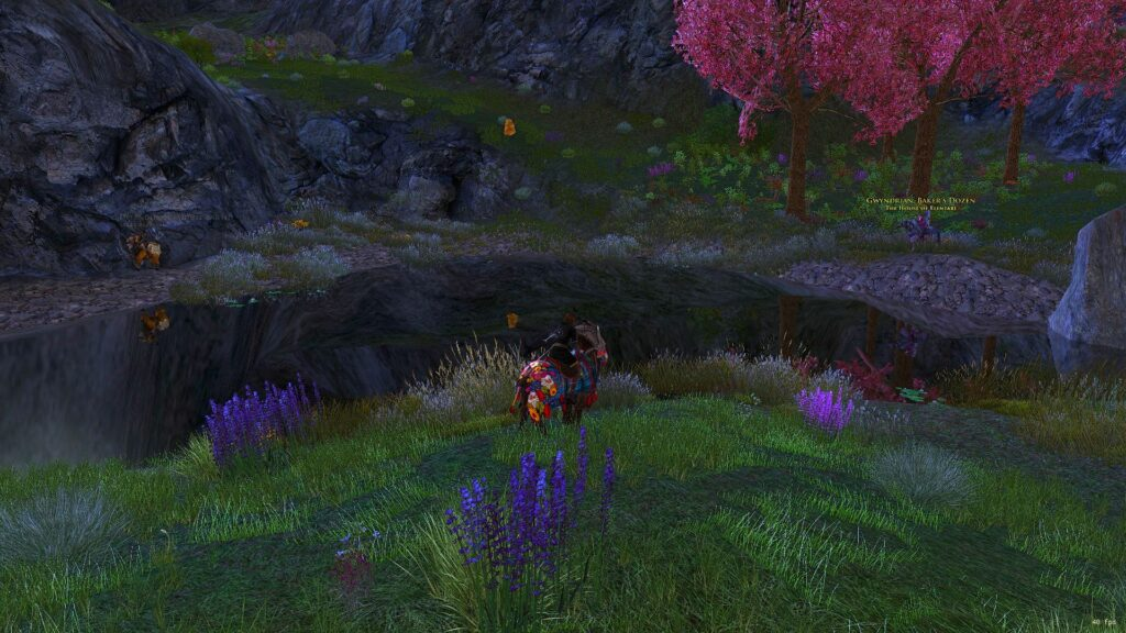 Sapphire Fireflies are found around this small pool of water in Ered Luin