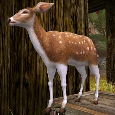 LOTRO Spotted Woodland Fawn - Cosmetic Pet - Farmers Faire