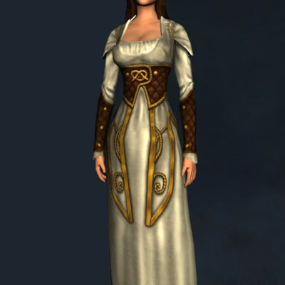 Harvest-Brew Dress - Upper Body Cosmetic