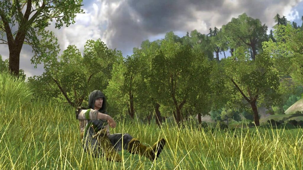 Halros Resting on the Grass in the Shire - LOTRO