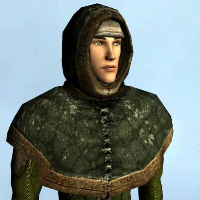 Hooded Mantle of Winter Drifts - Head and Shoulders Cosmetic