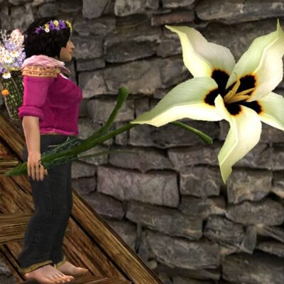 Giant Flower - Held Item, Cosmetic Weapon - LOTRO Spring Festival