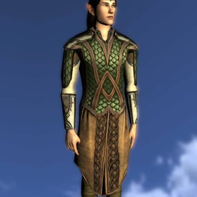 Armour of the Waking Woods, LOTRO Anniversary Upper Body Cosmetic