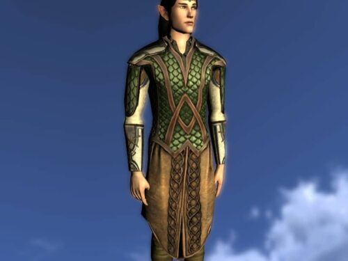 Armour of the Waking Wood, LOTRO Anniversary Upper Body Cosmetic
