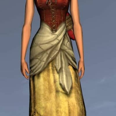 LOTRO Common Dress - Anniversary Upper Body Cosmetics (Steel Tokens)