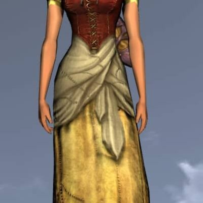 LOTRO Common Short-Sleeved Dress - Anniversary Upper Body Cosmetic (Steel Tokens)