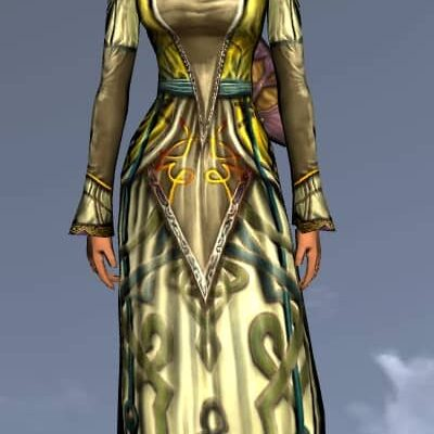 LOTRO Exquisite Long-Sleeved Dress - Anniversary Upper Body Cosmetic (Steel Tokens)