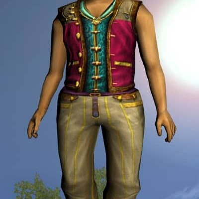 LOTRO Fancy Waistcoat - Anniversary Upper Body Cosmetic (Steel Tokens)