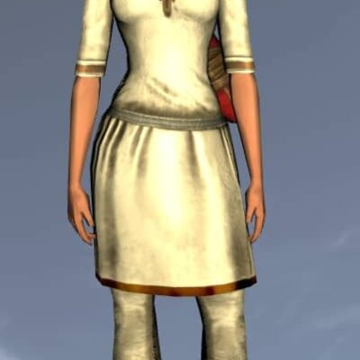 LOTRO Plain Short-Sleeved Tunic and Trousers - Anniversary Upper Body Cosmetic (Steel Tokens)