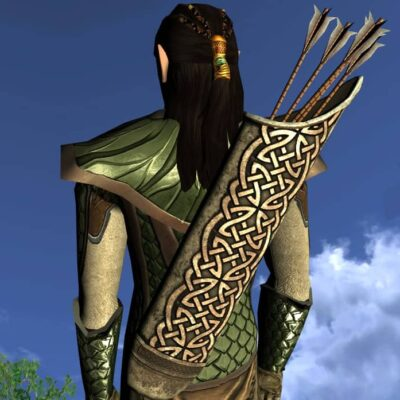 LOTRO Quiver of the Waking Woods - Anniversary Back Cosmetic