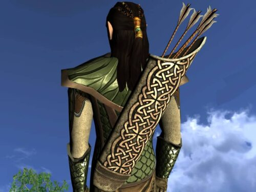 LOTRO Quiver of the Waking Wood - Anniversary Back Cosmetic