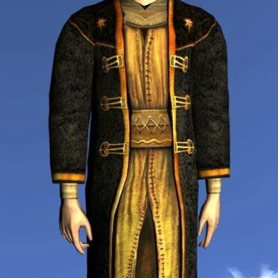 LOTRO Reveller's Robe of the Odogil - Anniversary Upper Body Cosmetic