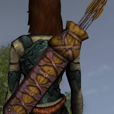 LOTRO Rugged Quiver - Anniversary Back Cosmetic (Steel Tokens)