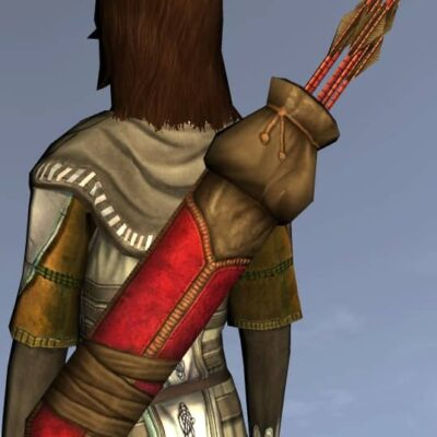 LOTRO Sturdy Quiver - Anniversary Back Cosmetic (Steel Tokens)