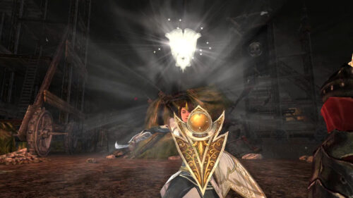 This Guardian outfit features the Elven Soldier's Shield - with combat animation of a light glow