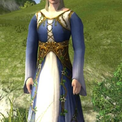 Dress of Entwining Blossoms - LOTRO Midsummer 2021 Upper Body Cosmetic