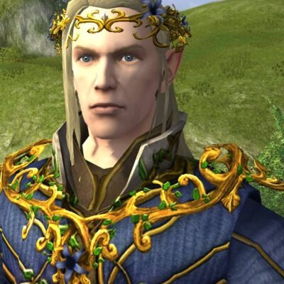 Mantle of Entwining Blossoms - LOTRO Midsummer 2021 Shoulder Cosmetic