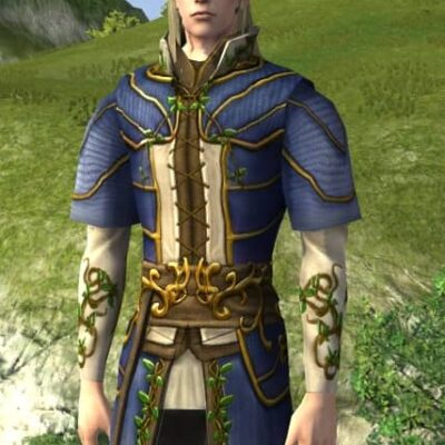Tunic of Entwining Blossoms - LOTRO Midsummer 2021 Upper Body Cosmetic