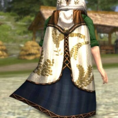 LOTRO Hooded Cloak of the Harvest - Farmer's Faire Back Cosmetic